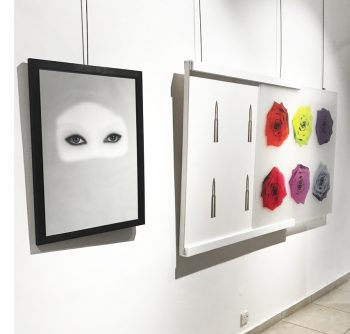 Dar Al Funoon Gallery: Private Collection